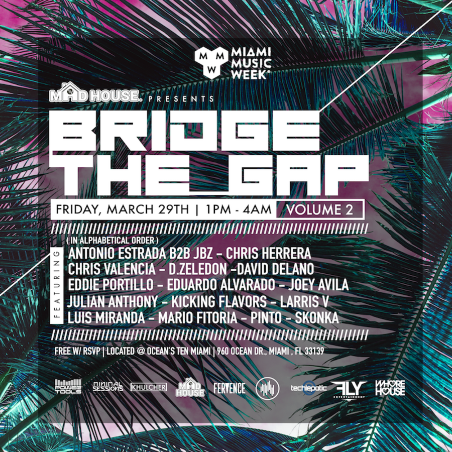 Madhouse Presents: Bridge The Gap Volume 2 Image