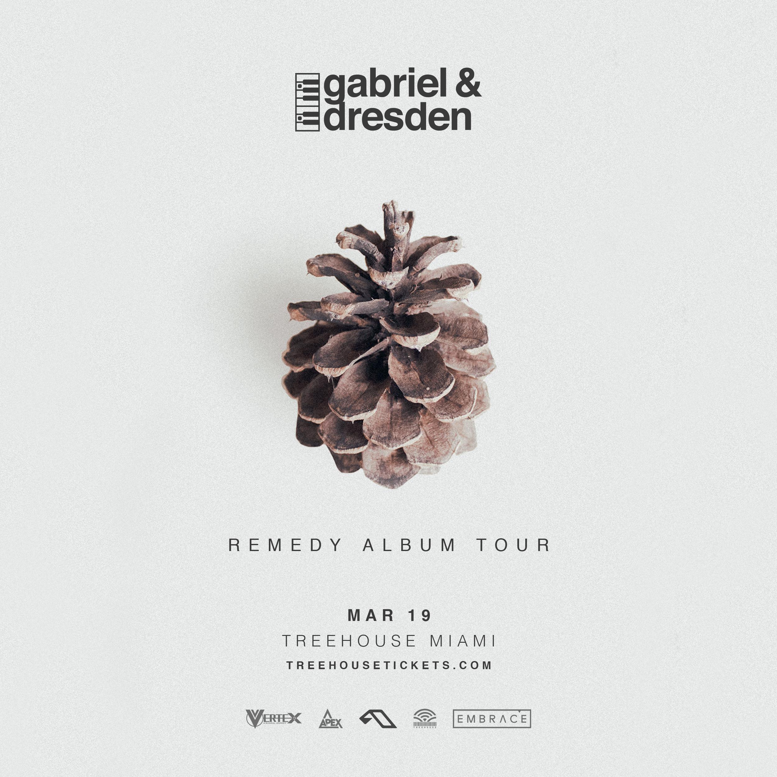 Gabriel & Dresden Presents Remedy Album Party @ Treehouse Miami Flyer
