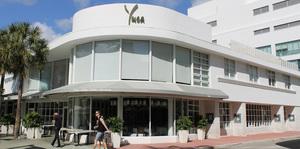 Yuca Image